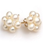 Clustered Freshwater Pearl Earrings with 14k Posts