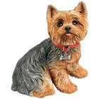Life-Size Yorkshire Terrier Figurine