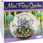 Glass Terrarium Mini Fairy Garden