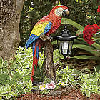 Solar Parrot with Lantern