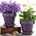 Family Name Personalized Purple Flower Pot