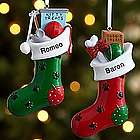 Paw-fect Pet Stocking Personalized Ornament