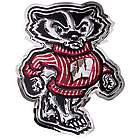 Wisconsin Bucky Badger Metal Art
