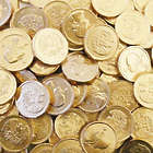 3 Pounds of Chocolate Gold Half Dollar Coins