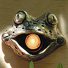 Bronze Frog Doorbell Cover
