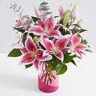 Fragrant Stargazer Lilies with Pink Geo Vase