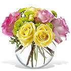 Pink Lemonade Rose Bouquet