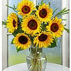 Birthday Sunflower Radiance Bouquet with Vase