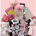 Welcome Home Baby Girl Gift Basket