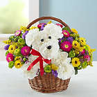 A-Dog-Able Bouquet in a Basket