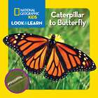 Kid's Caterpillar to Butterfly Look and Learn Book
