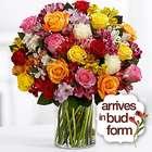 Premium Smiles and Sunshine Bouquet