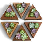 6 Handmade Wooden Succulent Planter Triangles