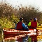 Bodega Bay Tandem Kayaking Tour
