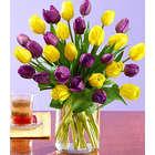 30 Royal Dutch Tulips Bouquet