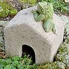 Square Toad House