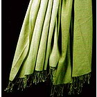 Ombre Dyed Pashmina Shawl in Olive Green