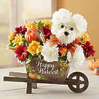 a-DOG-able Bouquet for Fall
