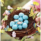 Spring Nest with Gourmet Candy Eggs