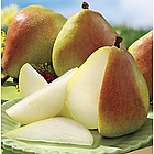 Summertime Royal Riviera® Pears