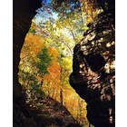 Parfreys Glen Autumn Photograph