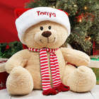 Holiday Sherman Teddy Bear