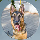 Personalized Dog Bone Photo Ornament