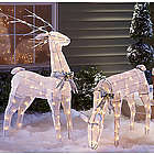 Animated Buck or Doe Lighted Lawn Ornament