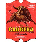 Vintage Personalized Tequila Pub Sign