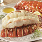 4 10 oz. Succulent Lobster Tails
