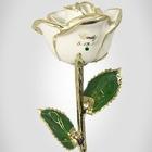 Birthstone Gold Trimmed Rose