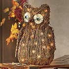 Ophelia Owl Lighted Figurine