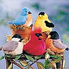 Singing Plush Songbirds