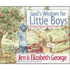 God's Wisdom for Boys Children's Book