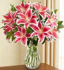 Raspberry Swirl Stargazer Lilies Bouquet