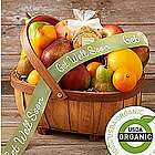 Organic Living Fruit Gift Basket with Get Well Ribbon
