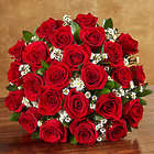 24 Stems of Premium Long-Stemmed Red Roses for Valentine's Day