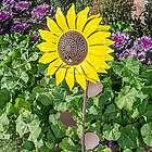 Sunflower Bird Feeder and Garden Stake