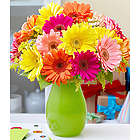 Colorful Birthday Daises Bouquet