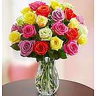 Two Dozen Assorted Roses Bouquet