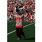 University of Wisconsin Bucky Badger Poster