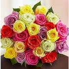 24 Assorted Roses Bouquet