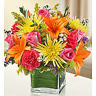Healing Tears Multicolor Sympathy Bouquet