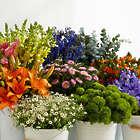 Farmer's Favorite Bouquet with Floral Print Vase & Chocolates