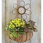 Sunny Day Dish Garden
