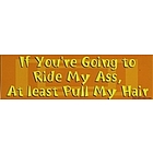 If You're Going to Ride My A**, At Least Pull My Hair Car Magnet
