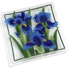 """Iris 10"""" Square Plate"""
