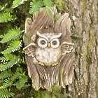 Owl in Tree Garden Statue