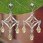 Glamorous Citrine and Garnet Earrings
