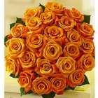 2 Dozen Orange Roses